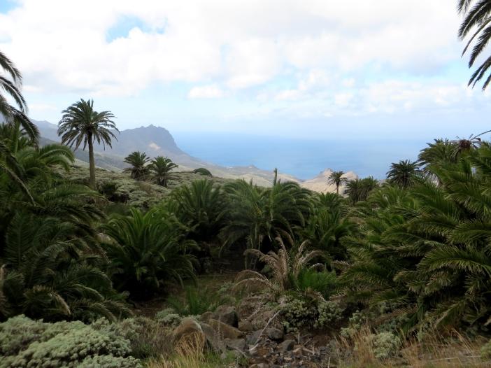 La Gomera en las Islas Canarias